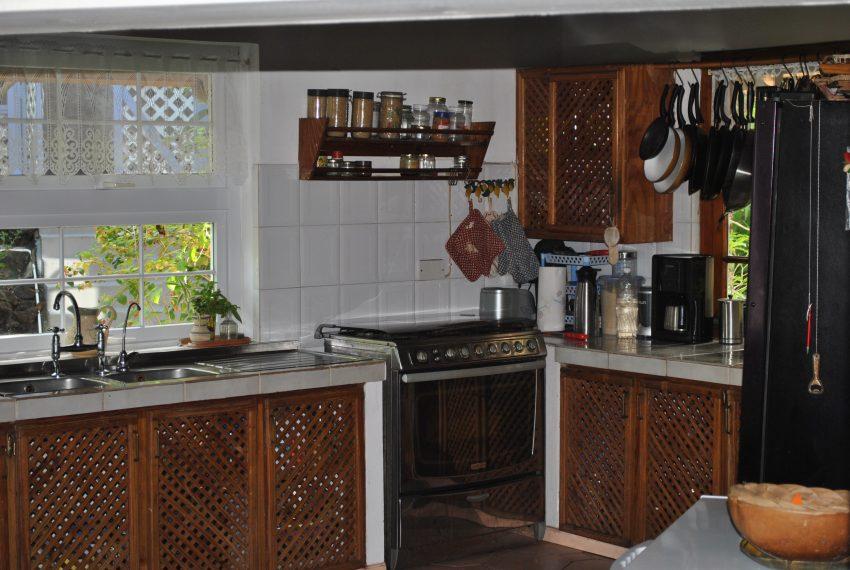 main house kitchen03