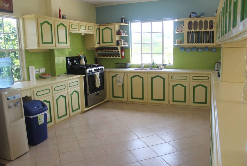 St-Lucia-Homes---Choiseul-Family-Home---Kitchen