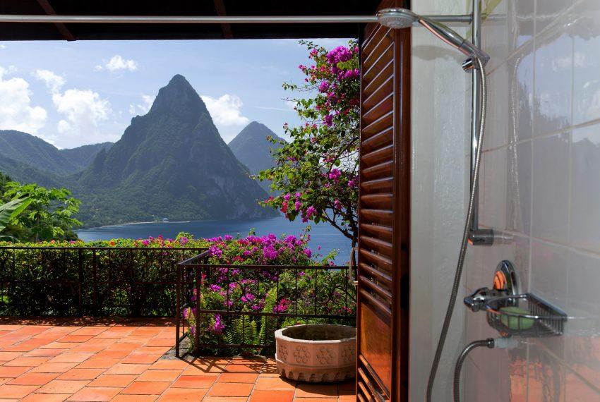 Master bath shower & view