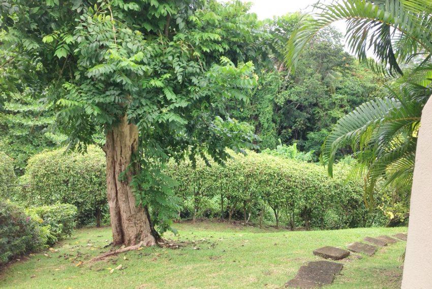 St-Lucia-Homes---MRG033---Villa-Ashiana---Sitting-yard